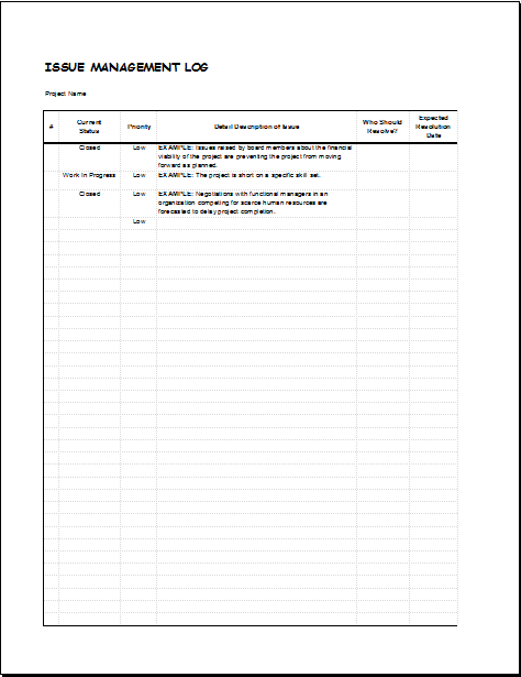 Issue management log template